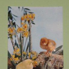 Postales: PRECIOSA POSTAL DE LOS AÑOS 70 CON DETALLES ENGALARDONADOS EN PURPURINA , MODELOS COLECCIONABLES. Lote 54567598