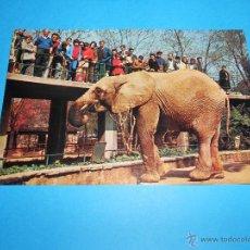 Postales: POSTAL ELEFANTE AFRICANO BALDUFA - ZOO DE BARCELONA - 1969 - ESCRITA Y CIRCULADA. Lote 54671176