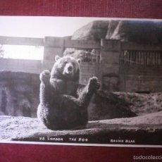 Postales: POSTAL - EUROPA - GRAN BRETAÑA - Z8 THE ZOO - LONDON - BROWN BEAR - NUEVA - AÑOS 20. Lote 56650490