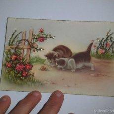 Postales: BONITA POSTAL GATITOS OBSERVANDO CARACOL EDICIONES C Y Z 563. Lote 58087429