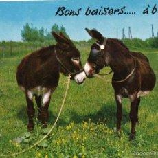 Postales: BURROS. ESCRITA, 1986. Lote 60688963