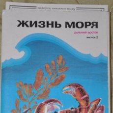 Postales: JUEGO 16 CARTELES SOVIETICOS .MI VIDA .URSS.1989A. Lote 64696375