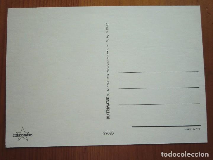Postales: Postal del animal RANA, SAPO (1989) ¡Nueva! - Foto 2 - 68307505