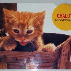 Postales: POSTAL DE GATITO CHALUT LA COMPAGNIE BUBBLES CARDS FOTO R. CUSHMAN HAYES COMBIER MACON. SIN CIRCULAR. Lote 69283974