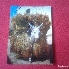 Postales: PRECIOSA POSTAL POSTCARD POST CARD BORRICO CARGADO DE TRIGO BURRO BURRITO DONKEY WHEAT VER FOTO/S . Lote 69336673