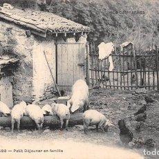 Postales: PETIT DEJEUNER EN FAMILLE. Lote 77306837