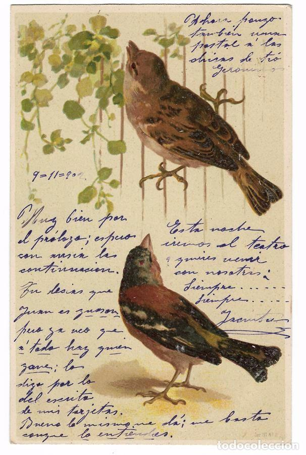 ANTIGUA POSTAL PÁJAROS - CIRCULADA 1902 - REVERSO SIN DIVIDIR (Postales - Postales Temáticas - Animales)