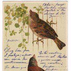 Postales: ANTIGUA POSTAL PÁJAROS - CIRCULADA 1902 - REVERSO SIN DIVIDIR . Lote 79245817