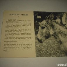 Postales: ORACION DE BORRICO . BURRO VIOLETA . EUGENIO ARRAIZA . PAMPLONA. Lote 88769376
