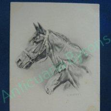 Postales: POSTAL ANTIGUA. AÑO 1904. CABALLOS. ANDERS. Lote 95331591