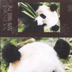 Postales: POSTAL CHINA. OSO PANDA. Lote 95473543