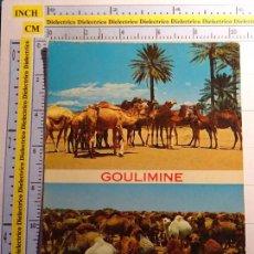 Postales: POSTAL DE ANIMALES. CARAVANA DE CAMELLOS EN GOULIMINE, MARRUECOS. 569. Lote 95909563