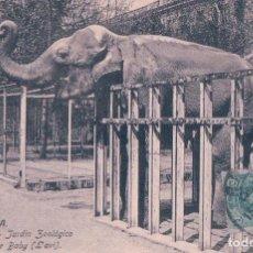 Postales: POSTAL DEL ELEFANTE BABY ( L AVI) EN EL JARDIN ZOOLOGICO DE BARCELONA - CIRCULADA 1917 - VENINI 31. Lote 96632755