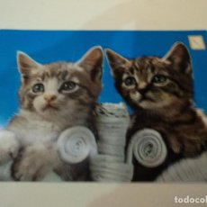 Postales: ANIMALES DOMESTICOS Nº 28 ESCUDO DE ORO. Lote 97894307