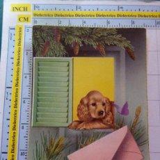Postales: POSTAL DE ANIMALES. PERRO PERRITO CARTA. 1019. Lote 98023131