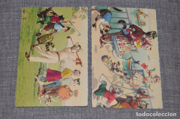 Postales: VINTAGE - LOTE DE 6 POSTALES CIRCULADAS - AÑOS 60 - MOTIVO GATOS - FABULAS ANIMALES - HAZ OFERTA - Foto 3 - 100754195