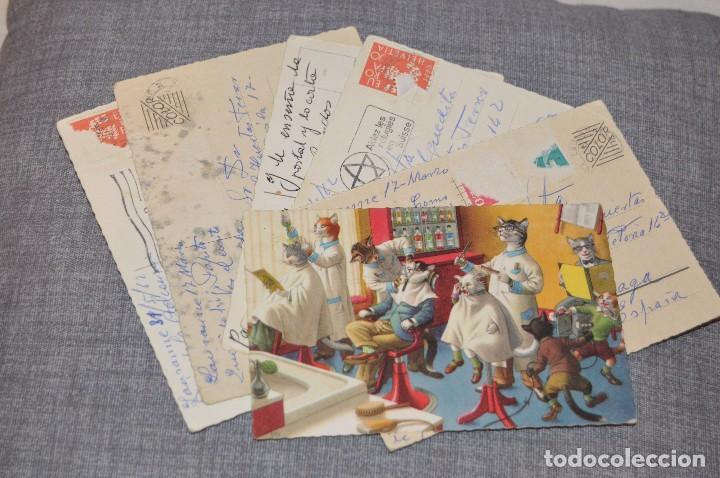 VINTAGE - LOTE DE 6 POSTALES CIRCULADAS - AÑOS 60 - MOTIVO GATOS - FABULAS ANIMALES - HAZ OFERTA (Postales - Postales Temáticas - Animales)