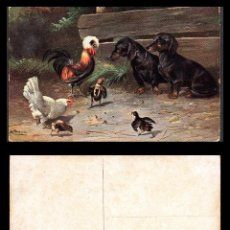 Postales: TARJETA POSTAL, ANIMALES ANTIGUA.. Lote 105021603
