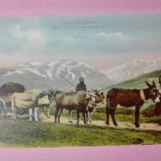 Postales: POSTAL FRANCIA TYPES PYRENEENS BUEY ASNO. Lote 105100619