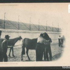 Postales: MARCANDO UN POTRO - COLECCIÓN CÁNOVAS - FOTO LAURENT - P23496. Lote 111711335