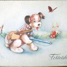 Postales: POSTAL J/B 310 PERRO CAZA CONEJO FELICIDADES AÑOS 40-50 NUEVO. Lote 112264239
