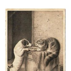 Postales: ANTIGUA POSTAL DE ANIMALES ENVIADA 1909. Lote 113940471