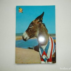Postales: (ALB-TC-18) POSTAL NUEVA TEMA ANIMALES BURRO EN LA PLAYA. Lote 114227471