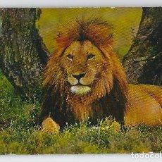 Postales: ANIMALES SALVAJES -ESCUDO DE ORO, 1970-. Lote 115133055