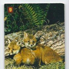 Postales: ANIMALES SALVAJES -ESCUDO DE ORO, 1975-. Lote 115133459