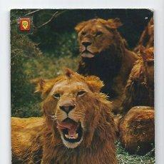 Postales: ANIMALES SALVAJES -ESCUDO DE ORO, 1975-. Lote 115133531