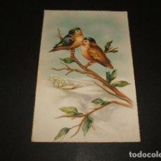 Postales: PAJAROS POSTAL ILUSTRADA. Lote 116531199