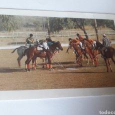 Postales: CABALLOS POLO UDAIPUR SHIKARBADI HOTEL RAJASTHAN INAIA. Lote 119265998
