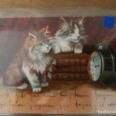 Postales: POSTAL ARTÍSTICA. GATOS. Lote 122037815