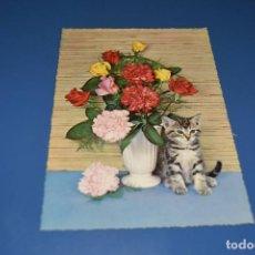 Postales: POSTAL SIN CIRCULAR - GATO - EDITA KRUGER 900/5. Lote 127500963
