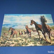 Postales: POSTAL CIRCULADA - MOVIBLE - CABALLOS. Lote 127504099