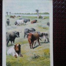 Postales: TARJETA POSTAL ARTÍSTICA ESPAÑOLA. EN EL CAMPO. 2 . SIN DIVIDIR. SIN CIRCULAR.. Lote 128318871
