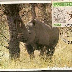 Postales: MOZAMBIQUE & POSTALE MAXIMO,RHINOCERINOS, CHITENGO 1980 (7979). Lote 128360303