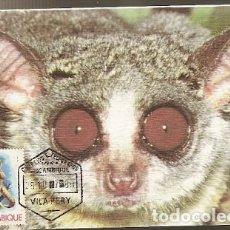 Postales: MOZAMBIQUE & MARCOFILIA, JAGARA, GALAGO CRASSICAUDATUS, VILA PERRY 1981 (7797). Lote 128360887
