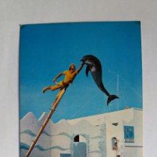 Postales: POSTAL - SAFARI PARK - VERGEL ALICANTE - CASABLANCA - DELFÍN. Lote 128599803