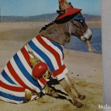 Postales: POSTAL ANIMALES CÓMICOS/ BURRO EN LA PLAYA Nº 3 QUE RICA ES! A.SUBIRATS CASANOVAS 1962-FISA. Lote 129020103