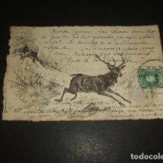 Postales: CIERVO GRABADO POSTAL. Lote 132540430