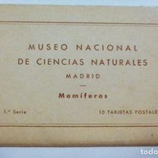 Postales: 10 POSTALES MUSEO NACIONAL CIENCIAS NATURALES PASEO CASTELLANA MADRID MAMIFEROS TALLERES ARTE BILBAO. Lote 133432394