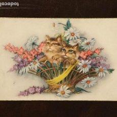 Postales: POSTAL GATOS CON FLORES. CYZ 504/A. ESCRITA 1954.. Lote 133449610