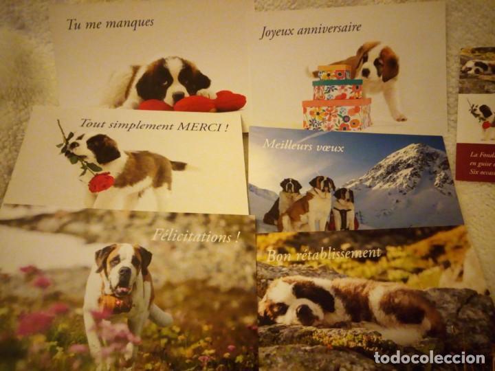 Postales: Lote de 6 postales de perros .nuevas - Foto 2 - 135613206