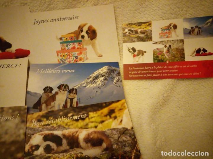 Postales: Lote de 6 postales de perros .nuevas - Foto 3 - 135613206