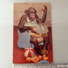 Postales: POSTAL AÑOS 50. Lote 135780729