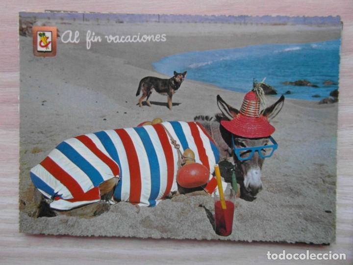 POSTAL SERIE ANIMALES COMICOS Nº 1. BURRO EN LA PLAYA. ESCRITA. SIN SELLO. EDICIONES FISA (Postales - Postales Temáticas - Animales)