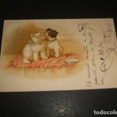 Postales: GATO Y PERRO POSTAL CROMOLITOGRAFICA ANTERIOR A 1906. Lote 137954702