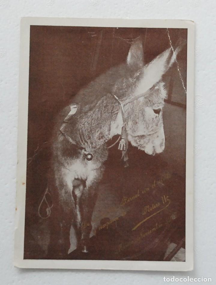 ORACION GRACIAS POR PLATERO II DEDICATORIA DE I. BERNAL ,SUBASTA PRO VALENCIA RADIO JUVENTUD 1957 (Postales - Postales Temáticas - Animales)