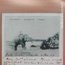 Postales: RARISIMA POSTAL ELEFANTE DESCARGANDO MADERAS ELEPHANT STACKING TIMBER CIRCULADA 1899 !! SIN SELLO. Lote 139958666